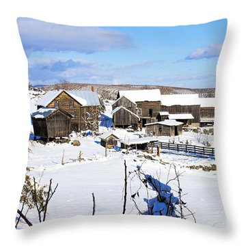 Frozen In Time Two In Color Throw Pillow