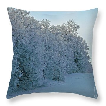 Throw Pillow featuring the photograph Frozen Lace by Christian Mattison