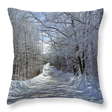 Throw Pillow featuring the photograph Frozen Lane by Christian Mattison