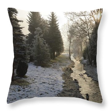 Throw Pillow featuring the painting Frozen Light by Felicia Tica