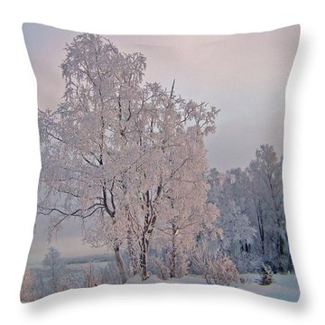 Throw Pillow featuring the photograph Frozen Moment by Jeremy Rhoades