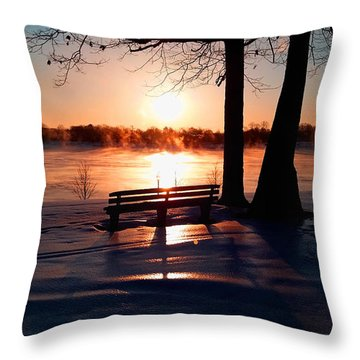 Throw Pillow featuring the photograph Frozen Park Benches by Michael Rucker