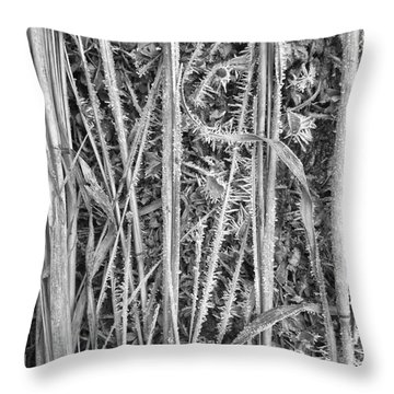 Frozen Prairie Throw Pillow by Tim Good