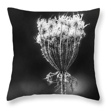 Throw Pillow featuring the photograph Frozen Queen by Melanie Lankford Photography