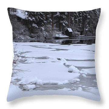 Frozen Silence  Throw Pillow