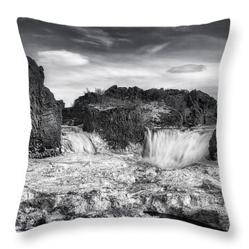 Frozen Splendor Throw Pillow by Evelina Kremsdorf