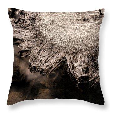Frozen Sun Throw Pillow by LeeAnn McLaneGoetz McLaneGoetzStudioLLCcom