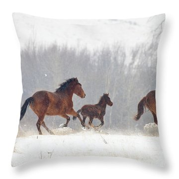 Frozen Track Throw Pillow by Mike  Dawson