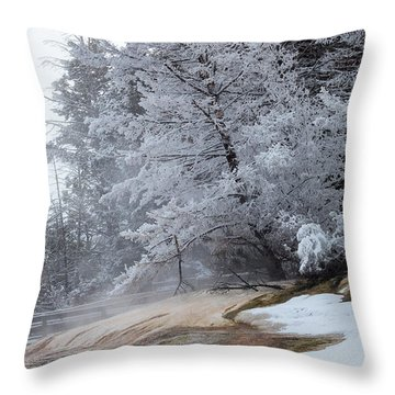 Frozen Tree Throw Pillow