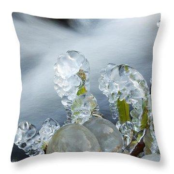 Frozen Wanderland II Throw Pillow