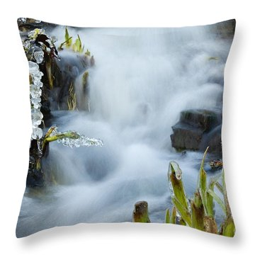 Frozen Wanderland IIi Throw Pillow