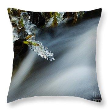 Frozen Wanderland Iv Throw Pillow