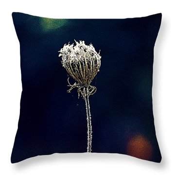 Throw Pillow featuring the photograph Frozen Warmth by Melanie Lankford Photography