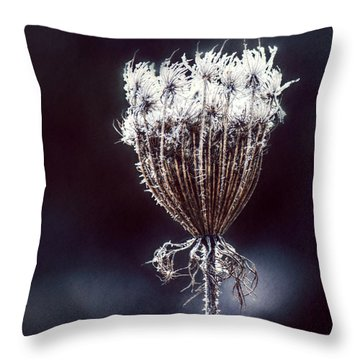 Throw Pillow featuring the photograph Frozen Wisps by Melanie Lankford Photography