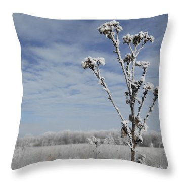 Frozen World Throw Pillow by Tim Good