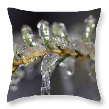 Frozen Yew Throw Pillow