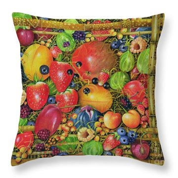 Fruit In Bamboo Box Throw Pillow by EB Watts
