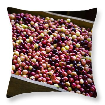 Fruit Of The Bog Throw Pillow by Andrew Pacheco