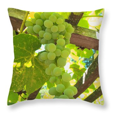Throw Pillow featuring the photograph Fruit Of The Vine - Garden Art For The Kitchen by Brooks Garten Hauschild