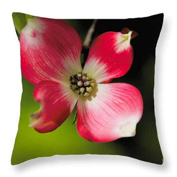 Fruit Tree Flower Throw Pillow