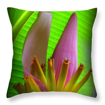 Fruits Ready Throw Pillow