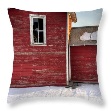 Ft Collins Barn 13496 Throw Pillow by Jerry Sodorff
