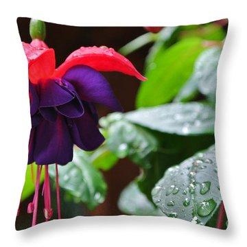 Fuchsia After Rain Throw Pillow