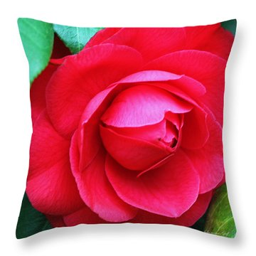 Fuchsia Camellia In Pastel Throw Pillow by Suzanne Gaff