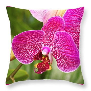 Fuchsia Moth Orchid Throw Pillow by Rona Black