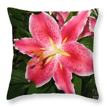 Throw Pillow featuring the photograph Fukuoka Lily by Carol Sweetwood