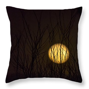 Full Moon Behind The Trees Throw Pillow by Angela A Stanton