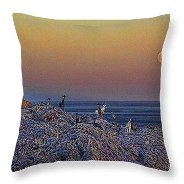 Full Moon Gathering Of Capricorn Throw Pillow