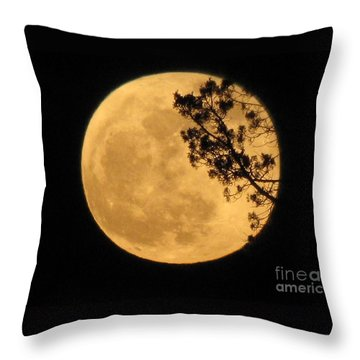 Throw Pillow featuring the photograph Full Moon by Michele Penner