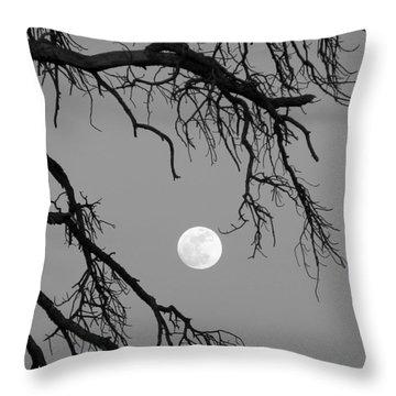 Full Moon Old Snag Throw Pillow