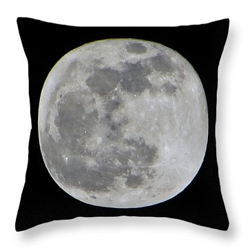 Full Moon Over Florida Throw Pillow by Tim Townsend
