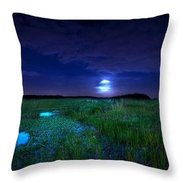 Full Moons And Fireflies Throw Pillow