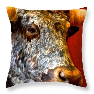 Full Of Bull Throw Pillow