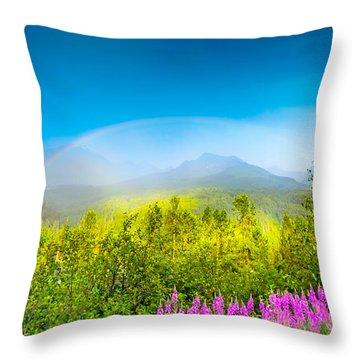 Full Spectrum Rainbow Throw Pillow