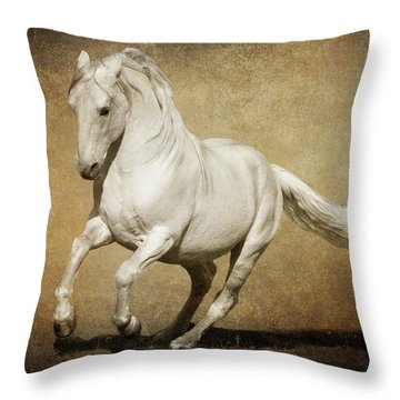 Throw Pillow featuring the photograph Full Steam Ahead by Wes and Dotty Weber