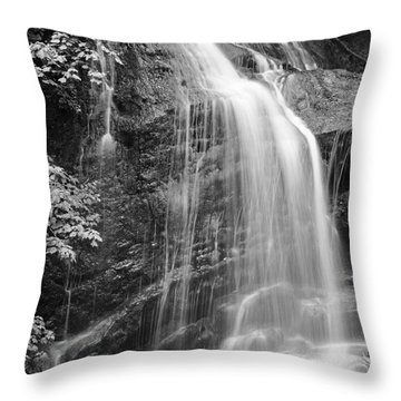 Fuller Falls Waterfall Black And White Throw Pillow