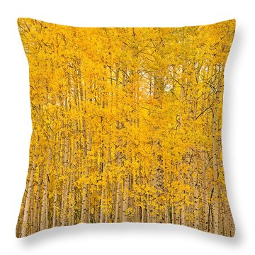 Fullness Of Gold Throw Pillow
