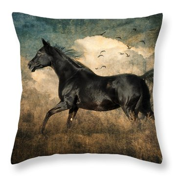 Fun To Run Throw Pillow