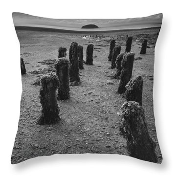 Fundy Dock Throw Pillow