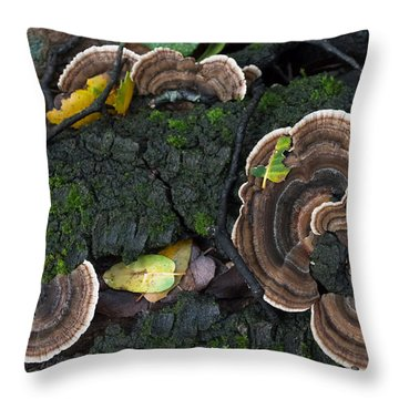 Fungi Contrast Throw Pillow