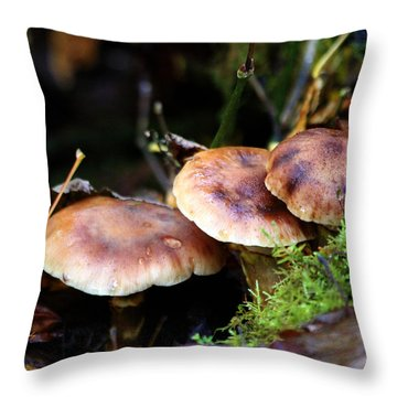 Fungus Among Us II Throw Pillow by Jeanette C Landstrom