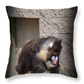 Funny Face Throw Pillow by Sara  Raber