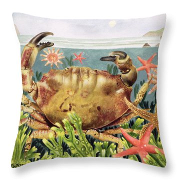 Furrowed Crab With Starfish Underwater Throw Pillow by EB Watts