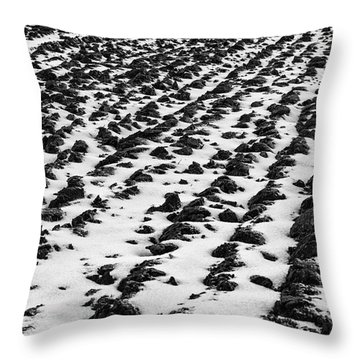 Furrows Throw Pillow by John Farnan