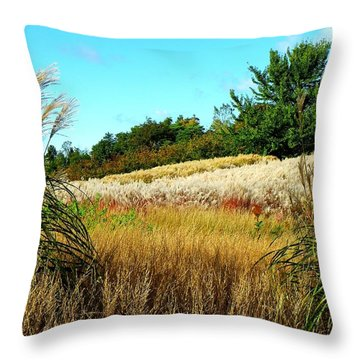 Furry Hill Throw Pillow