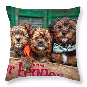 Furry Trio Throw Pillow by Sennie Pierson